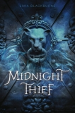 The Midnight Thief
