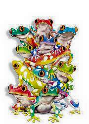 frogs1